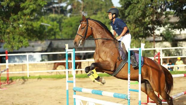 elective1horse-riding.jpg